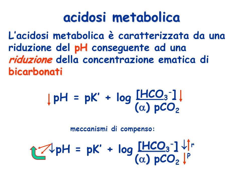 pH = pK' + log [HCO3-] pH = pK' + log [HCO3-]  acidosi metabolica